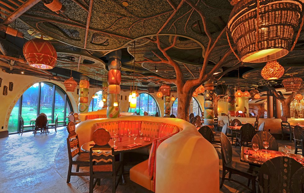 Disney Animal Kingdom Restaurants Best