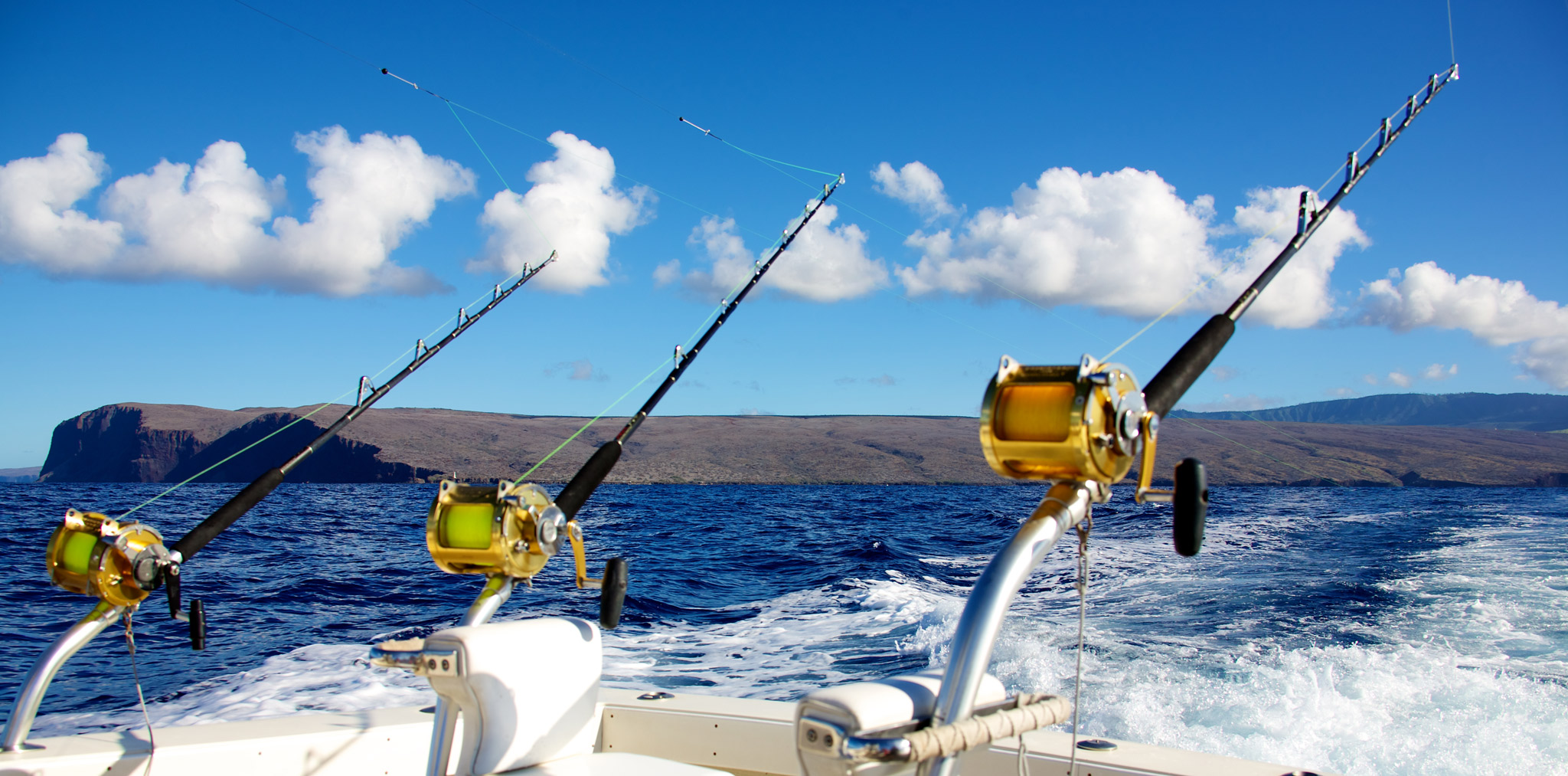 Deep sea fishing punta cana punta cana transat for Fishing at the sea